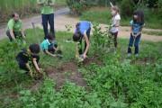 Clube Orgânico Nossa Horta completa um ano de atividade